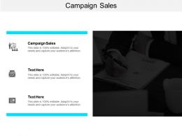 Campaign Sales Ppt Powerpoint Presentation Gallery Infographic Template Cpb