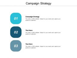Campaign Strategy Ppt Powerpoint Presentation Gallery Format Ideas Cpb