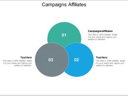 Campaigns Affiliates Ppt Powerpoint Presentation Summary Elements Cpb