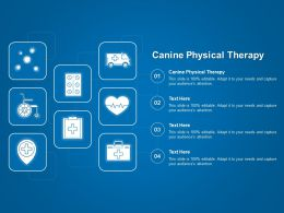 Canine Physical Therapy Ppt Powerpoint Presentation Professional Templates