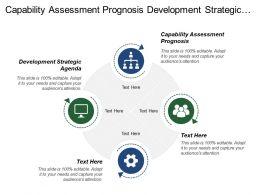 Capability Assessment Prognosis Development Strategic Agenda Strategy Development