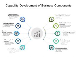 Capability Development Of Business Components