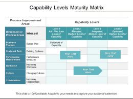 Capability Levels Maturity Matrix Powerpoint Guide