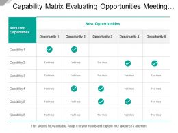 Capability Matrix Evaluating Opportunities Meeting Criteria On Required Category