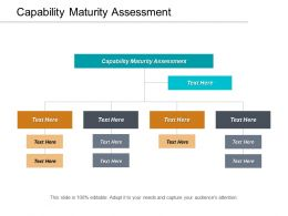 Capability Maturity Assessment Ppt Powerpoint Presentation Layouts Model Cpb