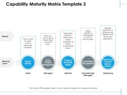 Capability Maturity Matrix Basic Project Management