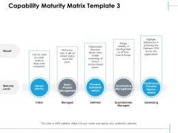 Capability Maturity Matrix Basic Project Management