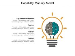 Capability Maturity Model Ppt Powerpoint Presentation Outline Infographics Cpb