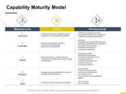 Capability Maturity Model Process Areas Ppt Powerpoint Presentation File Rules