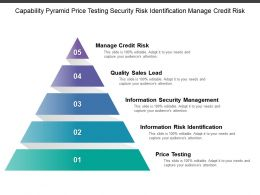 Capability Pyramid Price Testing Security Risk Identification Manage Credit Risk