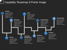 Capability Roadmap 9 Points Image
