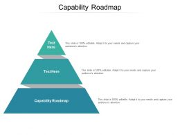 Capability Roadmap Ppt Powerpoint Presentation Gallery Styles Cpb