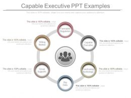 Capable Executive Ppt Examples
