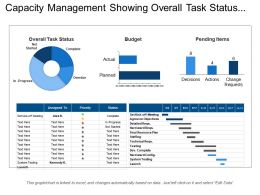 Capacity Management Showing Overall Task Status Budget Pending Items