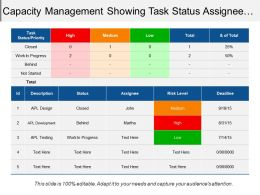 Capacity Management Showing Task Status Assignee Risk Level