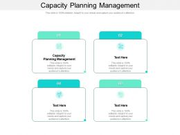 Capacity Planning Management Ppt Powerpoint Presentation Styles Outfit Cpb