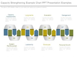 Capacity Strengthening Example Chart Ppt Presentation Examples