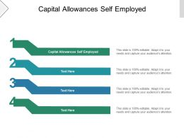 Capital Allowances Self Employed Ppt Powerpoint Presentation Styles Information Cpb