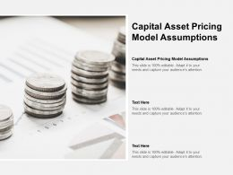 Capital Asset Pricing Model Assumptions Ppt Powerpoint Presentation Outline Example File Cpb