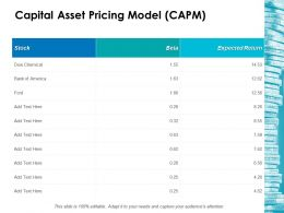 Capital Asset Pricing Model Capm Ppt Icon Designs Download