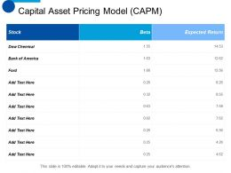 Capital Asset Pricing Model CAPM Ppt Summary Background Designs