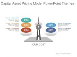 Capital Asset Pricing Model Powerpoint Themes