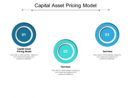 Capital Asset Pricing Model Ppt Powerpoint Presentation Ideas Demonstration Cpb