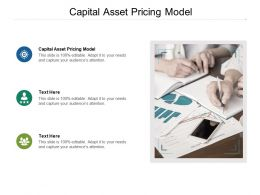 Capital Asset Pricing Model Ppt Powerpoint Presentation Inspiration Visuals Cpb