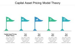 Capital Asset Pricing Model Theory Ppt Powerpoint Presentation Model Cpb