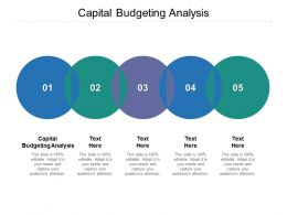 Capital Budgeting Analysis Ppt Powerpoint Presentation Layouts Rules Cpb
