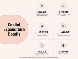 Capital Expenditure Details Business Ppt Powerpoint Presentation Icon Designs