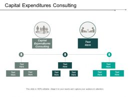 Capital Expenditures Consulting Ppt Powerpoint Presentation Gallery File Formats Cpb