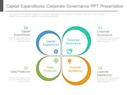 Capital Expenditures Corporate Governance Ppt Presentation
