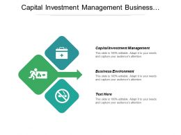 Capital Investment Management Business Environment Organizational Capacity Strategic Management Cpb