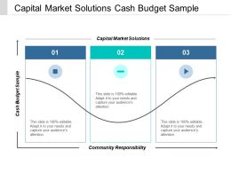 Capital Market Solutions Cash Budget Sample Community Responsibility Cpb