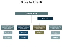 Capital Markets PR Ppt Powerpoint Presentation Slides Designs Cpb