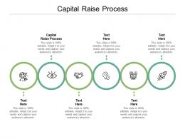 Capital Raise Process Ppt Powerpoint Presentation Show Information Cpb