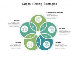 Capital Raising Strategies Ppt Powerpoint Presentation Layouts Good Cpb