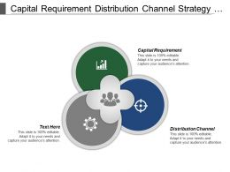Capital Requirement Distribution Channel Strategy Formation Industry Environment