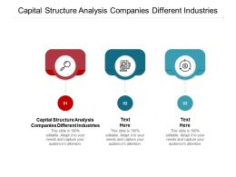 Capital Structure Analysis Companies Different Industries Ppt Powerpoint Presentation Gallery Aids Cpb