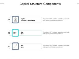 Capital Structure Components Ppt Powerpoint Presentation File Background Images Cpb