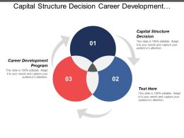 Capital Structure Decision Career Development Program Exit Strategy Planning