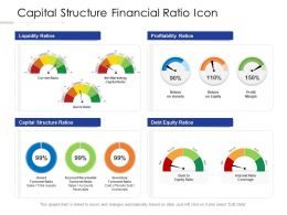 Capital Structure Financial Ratio Icon