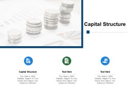 Capital Structure Ppt Powerpoint Presentation Outline Sample Cpb