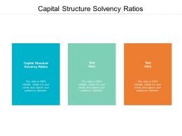 Capital Structure Solvency Ratios Ppt Powerpoint Presentation Show Layouts Cpb