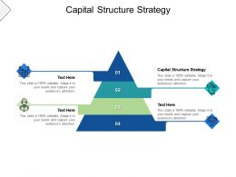 Capital Structure Strategy Ppt Powerpoint Presentation Icon Show Cpb