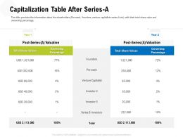 Capitalization Table After Series A M3317 Ppt Powerpoint Presentation Professional Files