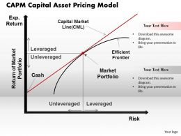 CAPM Capital Asset Pricing Model Powerpoint Presentation Slide Template