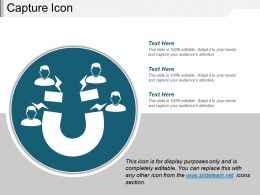 Capture Icons 7 Presentation Diagrams