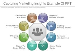 Capturing Marketing Insights Example Of Ppt